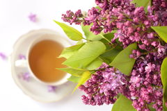 Spring flowers and cup of tea Stock Images