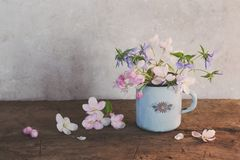 Spring flowers in cup on wooden table Stock Images