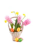 Spring flowers with easter eggs Royalty Free Stock Photography
