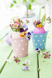 Spring flowers in easter eggs Royalty Free Stock Photos