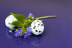 Spring flowers and easter eggs Stock Photography