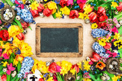 Spring flowers and easter eggs. Tulips, narcissus, hyacinth and. Pansy blossoms. Holidays background with chalkboard for your text. Retro style toned with Royalty Free Stock Photography