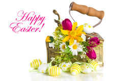 Spring flowers and easter eggs on white background stock photography