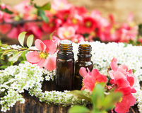 Spring Flowers Essence Bottles Royalty Free Stock Photography
