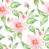 Spring flowers. Floral seamless pattern. Seamless pattern with pink watercolor flowers Royalty Free Stock Photos