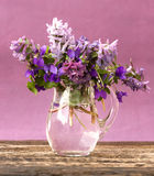 Spring flowers of forest in a jar Stock Photography