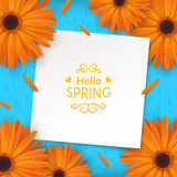 Spring flowers frame composition. Stock Photography