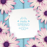 Spring flowers frame composition. Royalty Free Stock Image