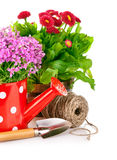 Spring flowers with garden tools Stock Photography