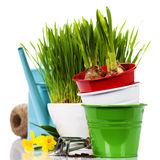 Spring flowers and garden tools Stock Photos