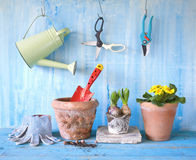 Spring flowers and gardening tools Royalty Free Stock Photography