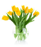 Spring flowers in glass vase. Isolated on white background Royalty Free Stock Images