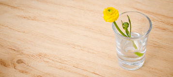 Spring flowers in glasses on a wooden table background. Beautiful spring flowers with banner add. Selective focus. Three spring or summer flowers in glasses on Stock Photography