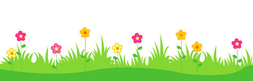 Spring flowers and grass. Green grass with cute spring flowers illustration isolated white background. Can use as web site header / Footer / banner