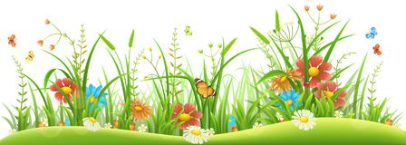 Spring flowers and grass. Green grass with spring flowers and butterflies on white background Stock Image