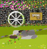 Spring and Flowers. Grass With Flowers Set, Vector Illustration Stock Images
