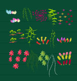 Spring and Flowers. Grass With Flowers Set, Vector Illustration Royalty Free Stock Images