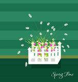 Spring and Flowers. Grass With Flowers Set, Vector Illustration Stock Image