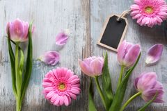 Spring flowers on gray shabby planks Royalty Free Stock Image