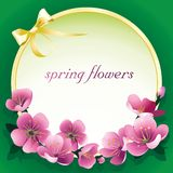 Spring flowers on a green background stock illustration