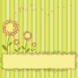 Spring flowers on green yellow stripe background Royalty Free Stock Photography