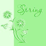 Spring flowers greeting card. Cute green card with spring flowers. Also available as a Vector in Adobe illustrator EPS 8 format. The different graphics are all Stock Photography