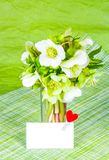 Spring flowers and greeting card with heart. Bouquet of hellebore on green background. stock image