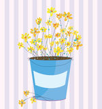 Spring flowers greeting easter background Royalty Free Stock Photography