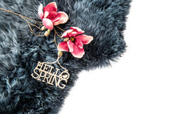 Spring flowers grey fur Wool texture Stock Photo