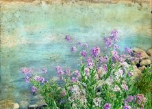 Spring Flowers on a Grunge Background