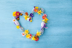 Spring flowers in a hearts shape Royalty Free Stock Photo