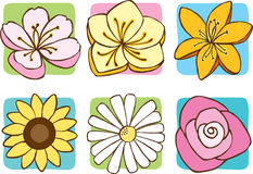 Spring Flowers Icon. A set of 6 flowers: Cherry Blossom, Buttercup, Tiger Lily, Sunflower, Daisy, Rose Royalty Free Stock Image