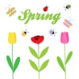 Spring flowers and insect vector background stock illustration