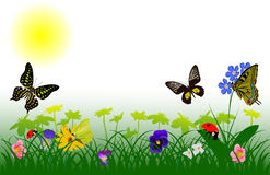 Spring flowers and insects Royalty Free Stock Images