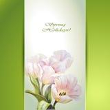 Spring flowers invitation Royalty Free Stock Photos