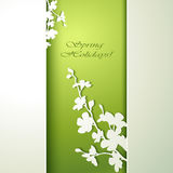 Spring flowers invitation Royalty Free Stock Photos
