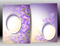 Spring flowers invitation template card Royalty Free Stock Photo