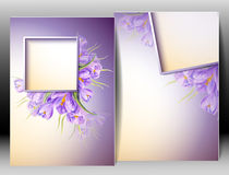 Spring flowers invitation template card Royalty Free Stock Image