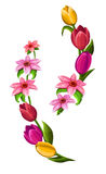 Spring flowers isolated on white Stock Photos