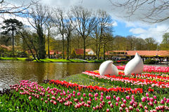 Spring flowers in Keukenhof park royalty free stock image