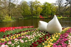 Spring flowers in Keukenhof park Royalty Free Stock Photo