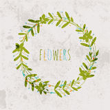 Spring flowers, leaves, dandelion, grass on a vintage background Stock Images