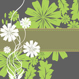 Spring Flowers and Leaves Frame. Background with green and white flowers. EPS 10 Stock Photos