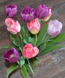 Tulip, tulips, flower, spring, pink, bouquet, flowers, isolated, white, nature, floral, purple, bunch, green, blossom, bloom, beau stock photos