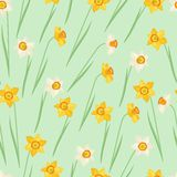 Spring flowers narcissus natural seamless pattern Stock Photos