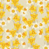 Spring flowers narcissus natural seamless pattern Royalty Free Stock Photo
