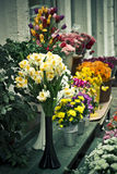 Spring flowers. In open air market Stock Photos