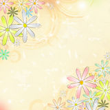 Spring flowers over beige old paper background with circles Royalty Free Stock Images