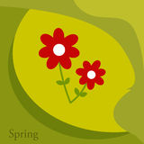 Spring. Flowers over green background Royalty Free Stock Photography