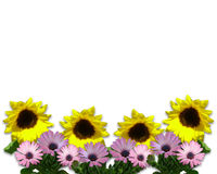 Spring Flowers Page Border Royalty Free Stock Photography